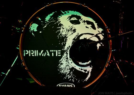 Primate-1