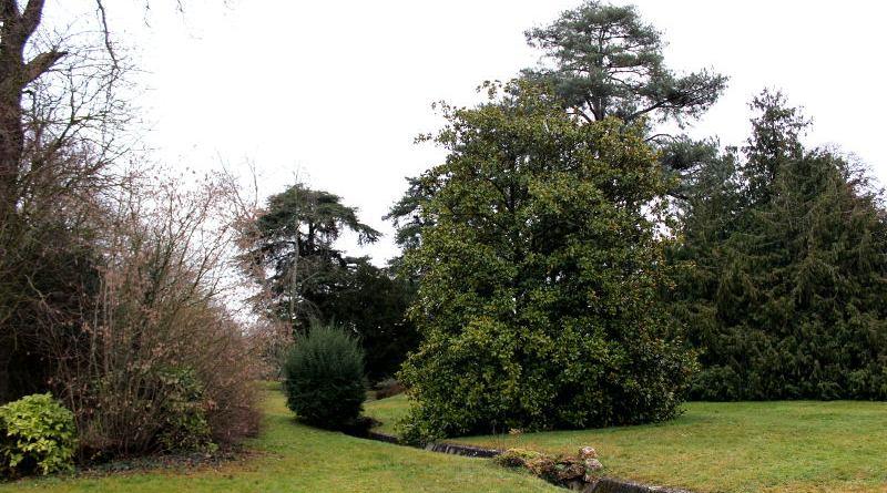 Jardin du trocadéro de Saint Cloud