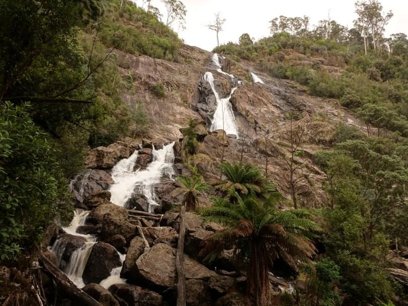 St Columba Falls tasmanie