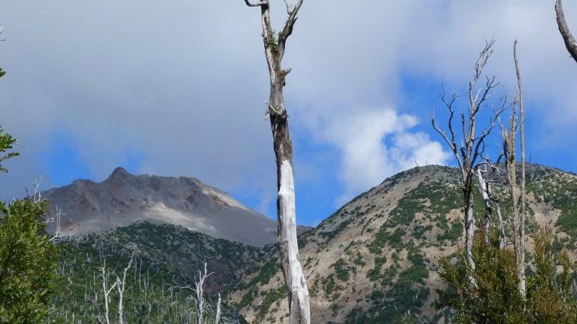 Pumalin volcan chaiten patagonie