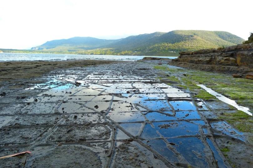 Tasmanie tessalated pavements