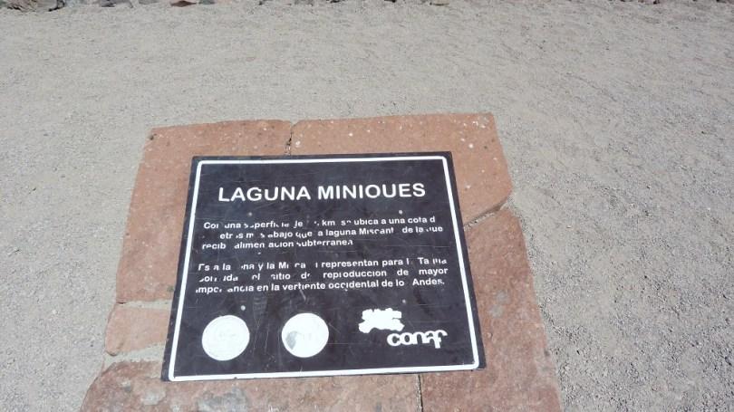 Laguna Miniques