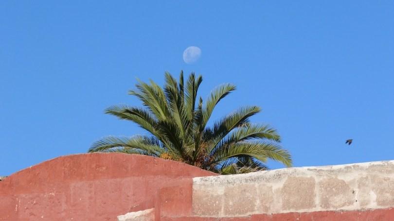 Lune Santa Catalina