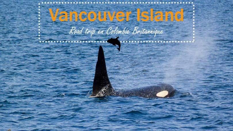 Vancouver-island-orque-telegraph-cove-couverture