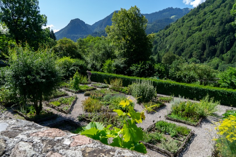 abbaye aulps potager