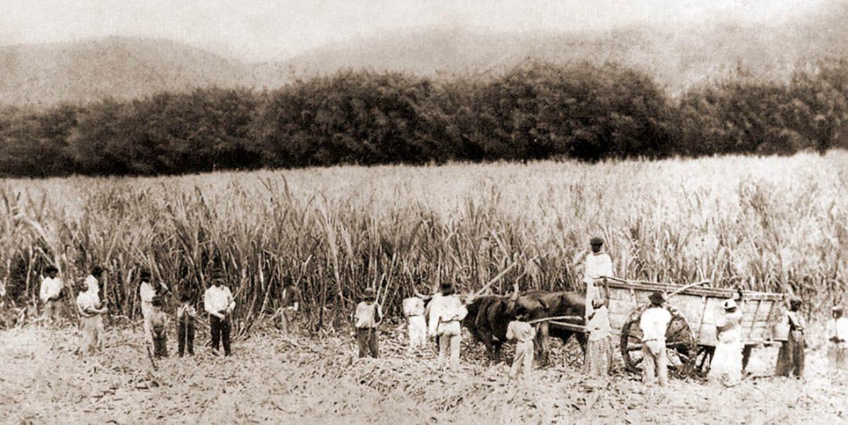 Escravo do Congo com 120 anos foi descoberto em Maceió no ano de 1931