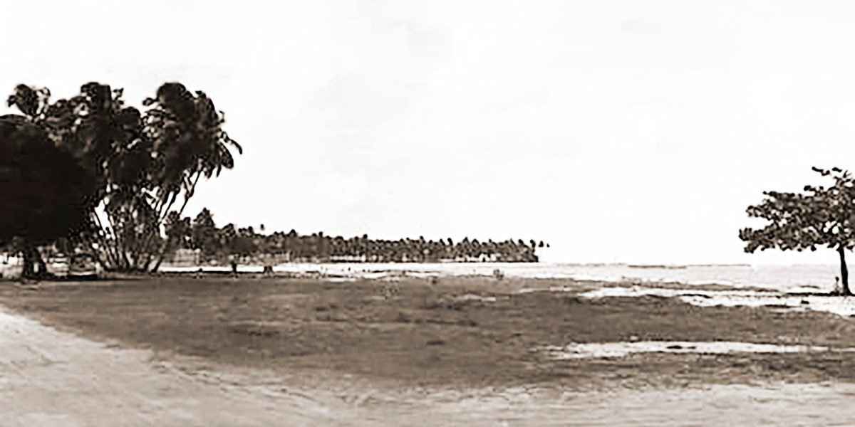 Os Sete Coqueiros da Pajuçara e da Ponta Verde