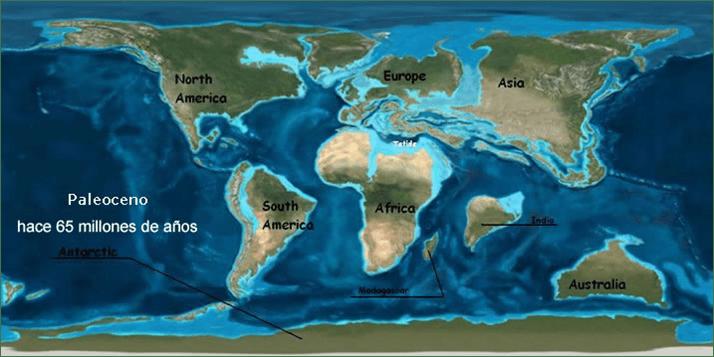 Mapa mundi con la posible reconstrucción de inicios del Paleoceno