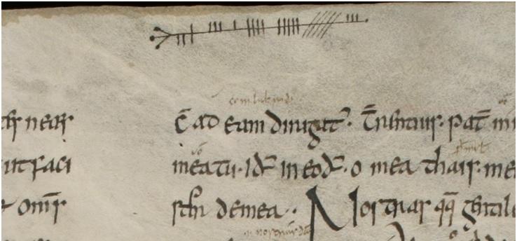 Escritura ogámica en la obra de Prisciano (siglo V dC) Institutiones Grammaticae Versión irlandesa del siglo VI dC del manuscrito descubierto en San Gall (Suiza)