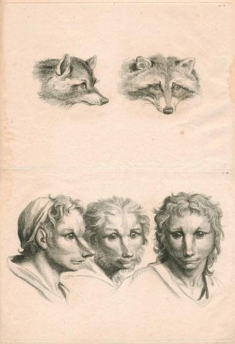 Charles le Brun, esboços fisionómicos de c.1727