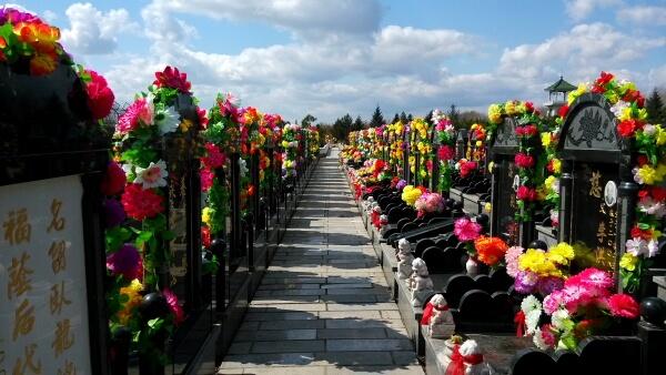 El Festival Qingming: más allá del culto a los difuntos