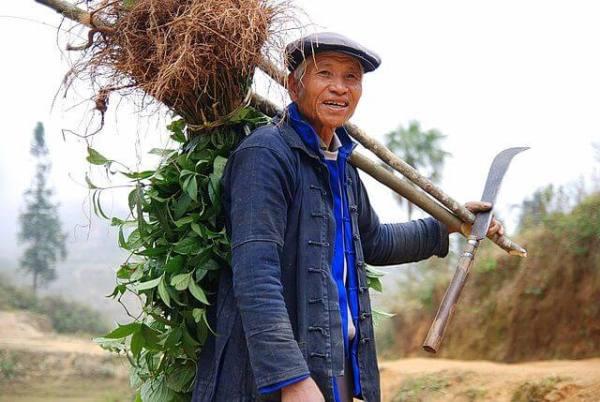 Campesino chino busca soltera vietnamita