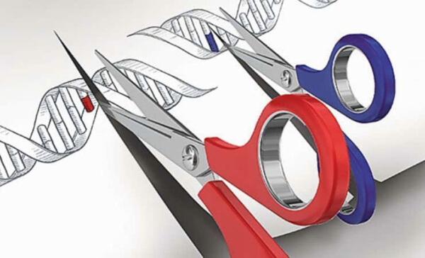 La edición de genes se abre camino en China: ¿resultado de una bioética laxa?
