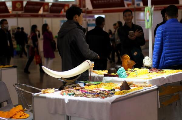 colmillo-elefante-feria-china-1
