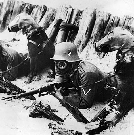 Máscaras antigás de la I Guerra Mundial  En la segunda batalla de Ypres (mayo de 1915), durante la I Guerra Mundial, los alemanes comenzaron a utilizar gas tóxico contra el enemigo. A partir de ese momento, los contendientes de ambos bandos hicieron uso bélico de este tipo de sustancias, que causaban ceguera, quemaduras cutáneas y lesiones pulmonares. Para protegerse, los combatientes incorporaron a su pertrecho máscaras antigás como las que se pueden ver en la imagen.