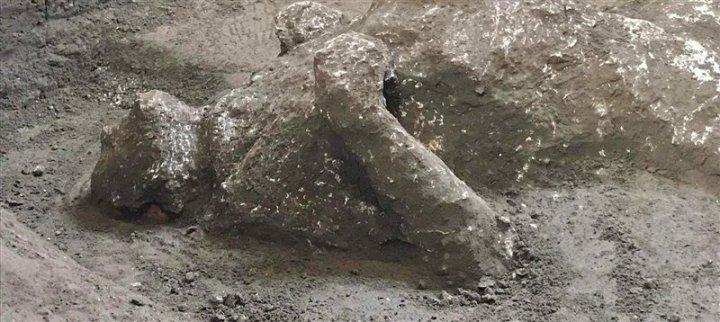 Detalle del calco de uno de los hombres, con los brazos cruzados sobre el pecho.