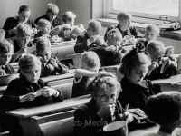 Holocaustüberlebende  in Holland