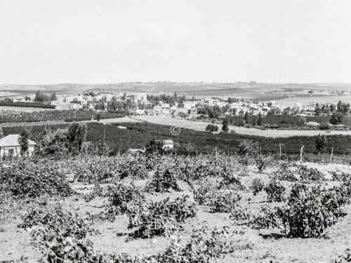 Jüdische Kolonien auf Sharon. Ramat Gan. Nördlich von Tel-Aviv