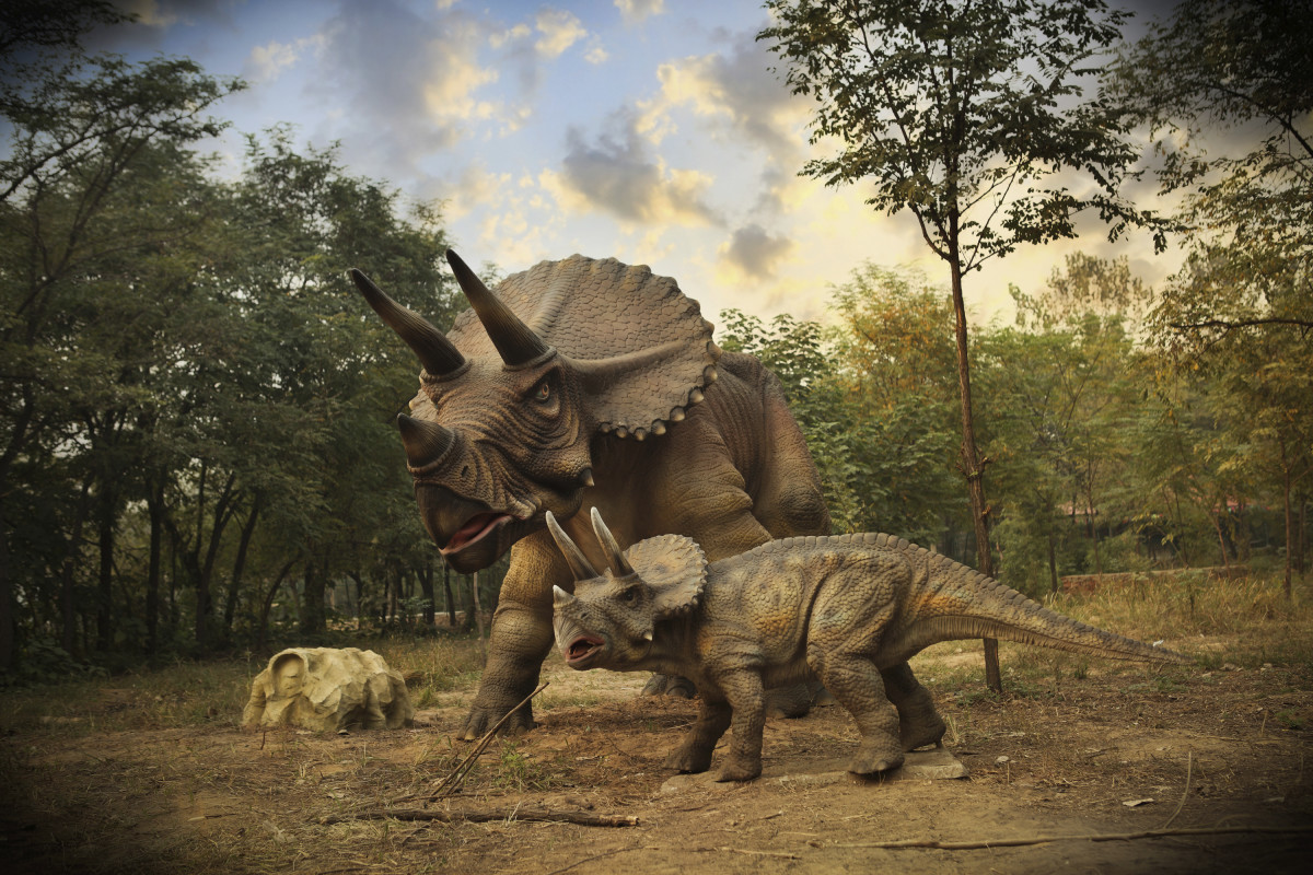 Cold Blooded Or Warm Blooded Dinosaurs May Have Been In