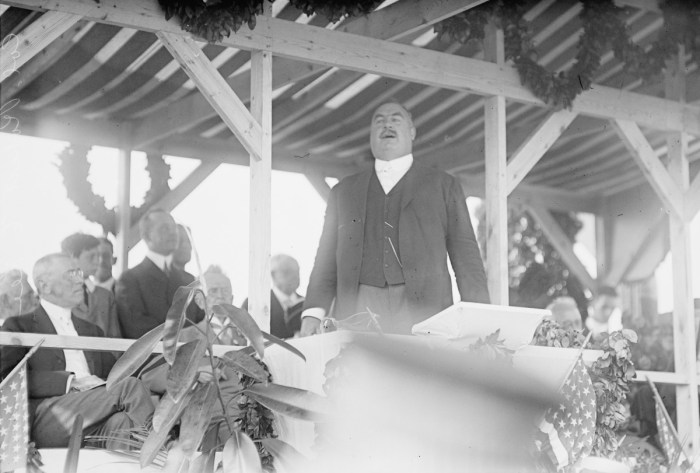 President Woodrow Wilson, seated far left, at the Arlington National Cemetery where Robert E Lee III, grandson and namesake of the Confederate general, speaks at the dedication of a Confederate monument in Arlington, Virginia, 1914.While Wilson's speech that day focused on national unity, his historical writings have romanticized the Confederacy.