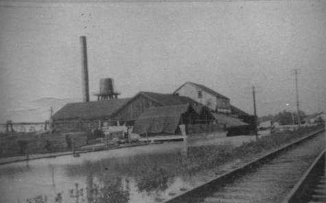 The Sawmill in Des Allemands