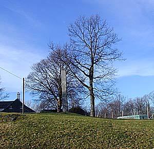 Tyveholmen - Il luogo del patibolo a Bergen (Norvegia)