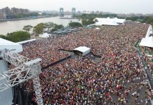 Electric Zoo Festival - Hit Channel