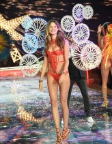 Victoria's Secret Fashion Show 2015 11