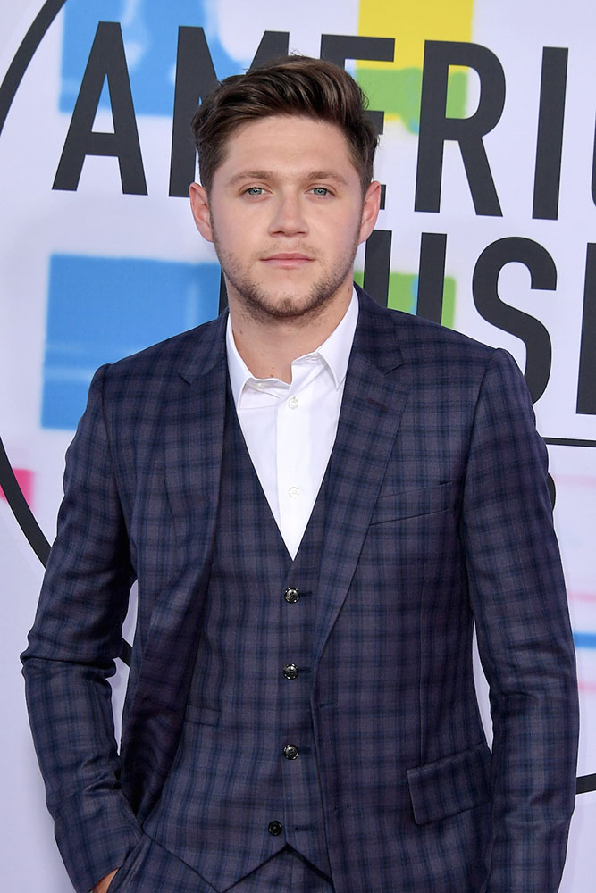 NIALL HORAN - RED CARPET - AMERICAN MUSIC AWARDS - AMAs 2017 - Hit Channel