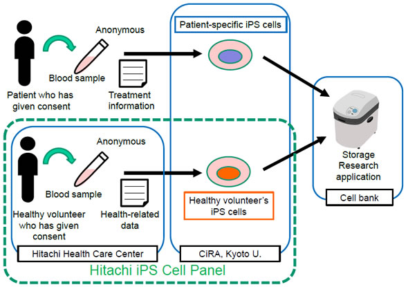[image]Scope of the Hitachi iPS Cell Panel