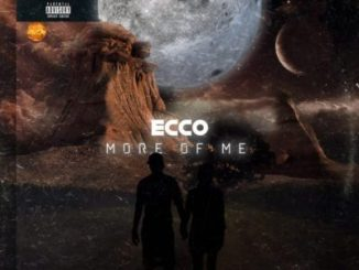 Ecco – Flying (Outro)