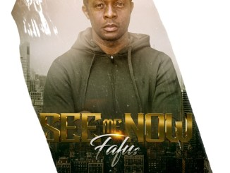 fafus see me now art cover'