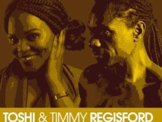 Toshi, Timmy Regisford – Revolution (Original Vocal Mix)