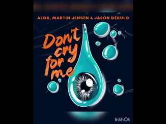 Martin Jensen & Alok – Don't Cry For Me Ft. Jason Derulo