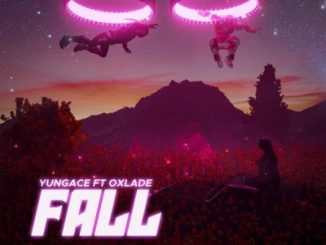 YungAce ft. Oxlade – Fall