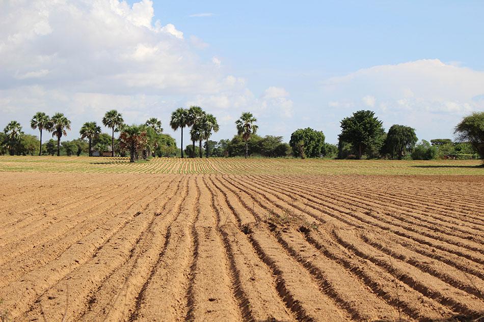 Agriculture raisonnée ou voyage raisonné, même combat.