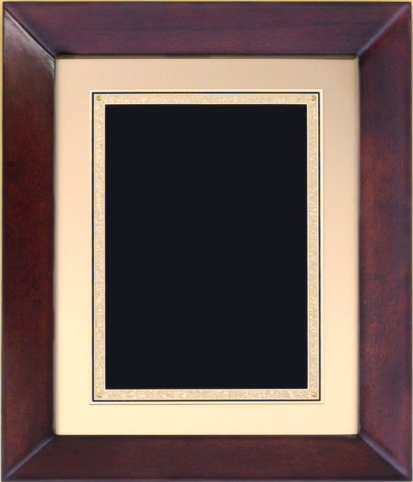 P4270 Plaque - Blank