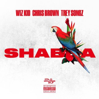 Wizkid Shabba Ft Chris Brown Trey Songz French Montana