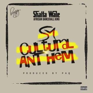 Shatta Wale Cultural Anthem