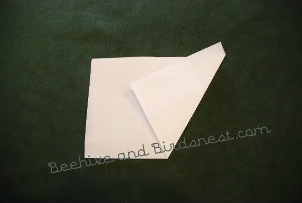 third fold