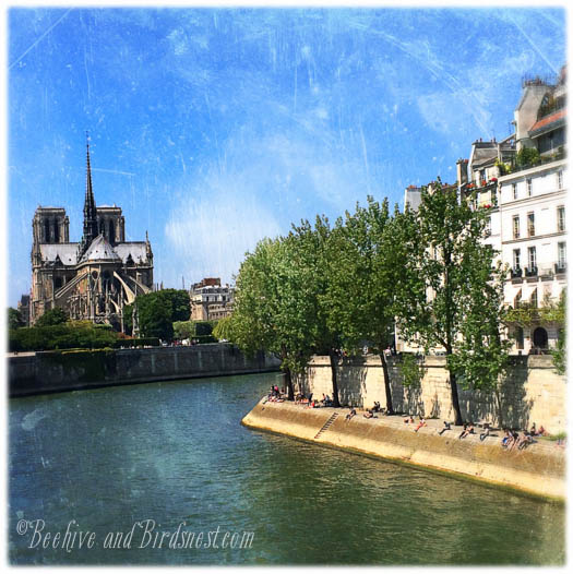 Paris Notre Dame Artsy