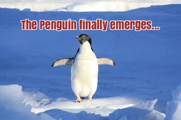 Google Updated Penguin