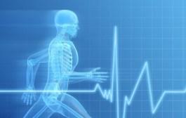 L'univers de la santé à portée de clic