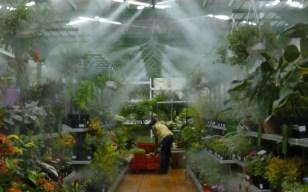 Une bonne hydratation est essentielle pour la bonne croissance de vos plantes