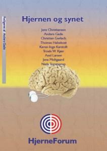 hjernenogsynet