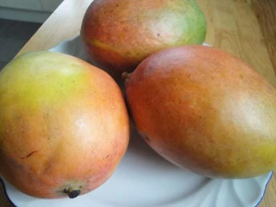 Mangomarmelade2