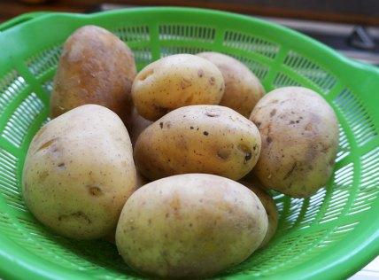 kartoffelpuffer1