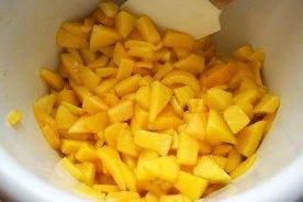 MangoWaldfruchtTorte5