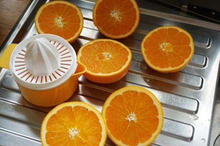 Orangeneis2