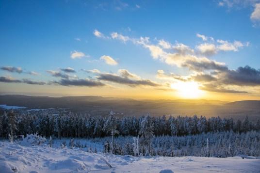 Schneelandschaft Harz